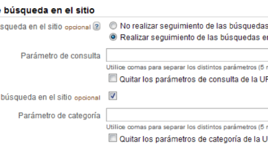 Búsqueda Interna Google Analytics 2