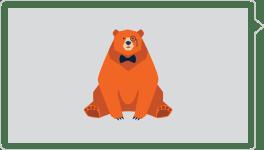 Imagen oso pardo