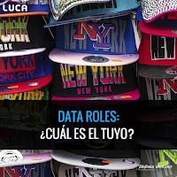 Roles de datos: ¿Cuál es el tuyo?