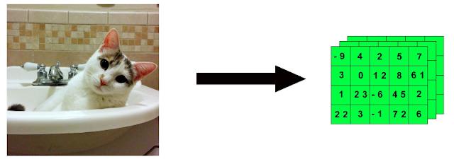 """Representación de cómo una imagen se puede """"encapsular"""" en un tensor 4D."""