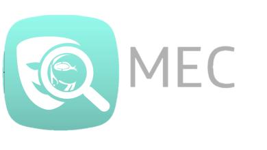 Nueva herramienta: Mask Extension Control (MEC), no te fíes de las extensiones en Windows