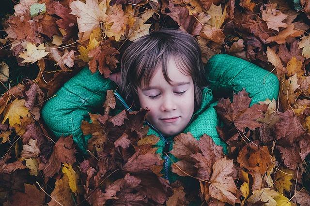Niño jugando con hojas en otoño