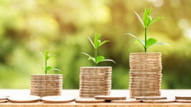 Empresas pequeñas, medianas y grandes: ¿cómo se diferencian?