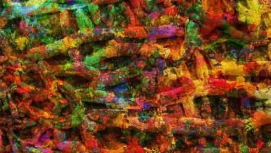 Imagen de bacterias