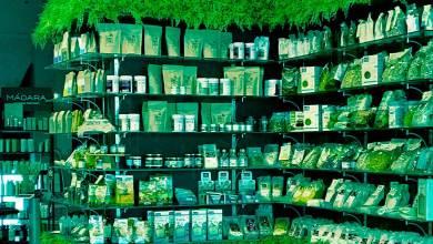 Bioeconomía: conoce su significado y el futuro que le espera | Thinkbig
