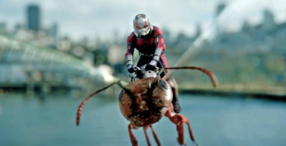 Ant-Man montado sobre una avista. Fuente.
