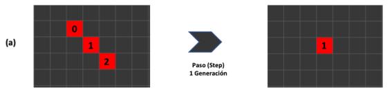 Figura 4. Detalle del primer autómata y su evolución en un salto generacional.