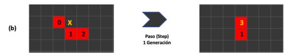 Figura 5. Detalle del segundo autómata y su evolución, donde se genera una nueva celda.