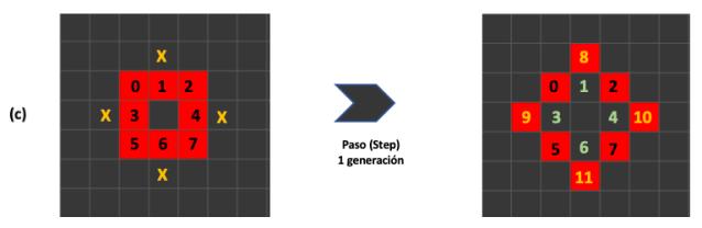 Figura 6. Evolución del autómata donde aparece la cuarta regla, superpoblación.