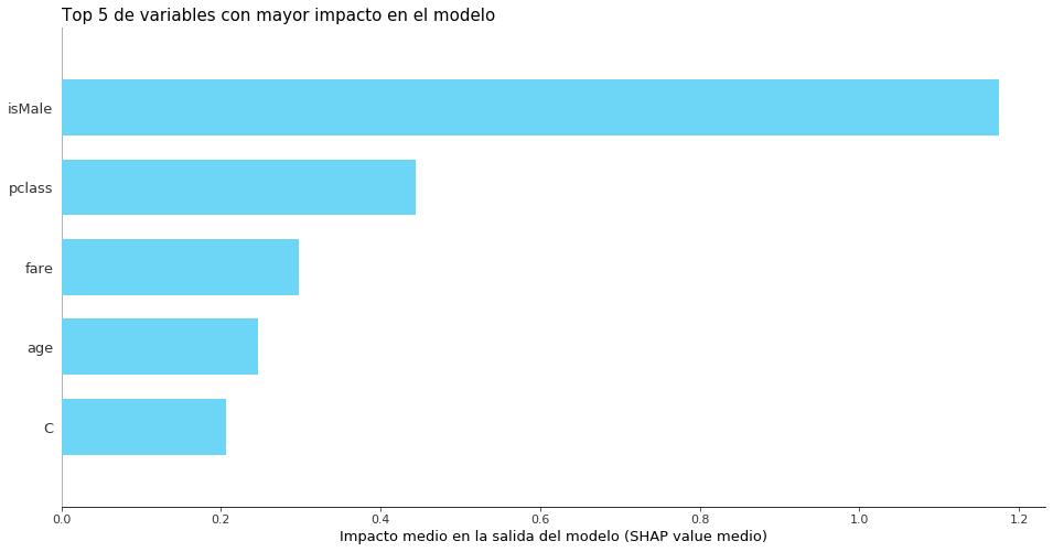 Figura 2: Top 5 variables más importantes en el modelo