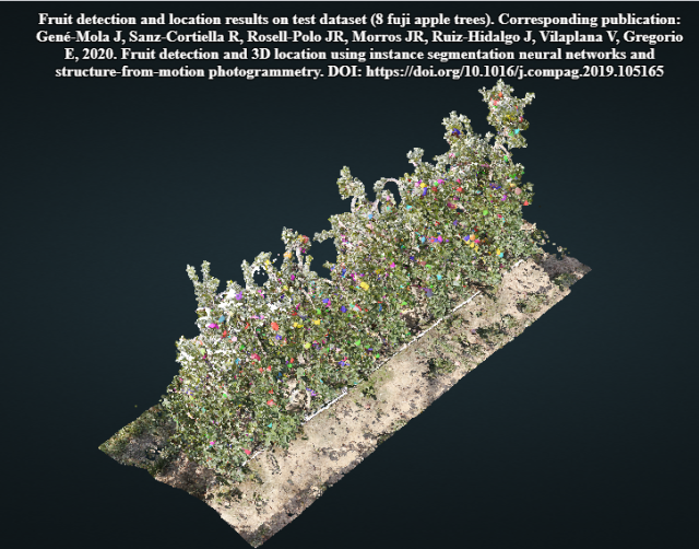 http://www.grap.udl.cat/documents/photogrammetry_fruit_detection.html