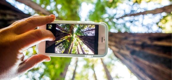 sello-eco-smart-telefonica