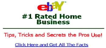Figura 1: Adversarial examples Ebay