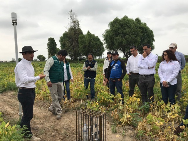 Explicación propuesta tecnológica en campo a la Viceministra de Políticas Agrarias del Ministerio de Agricultura y Riego de Perú.