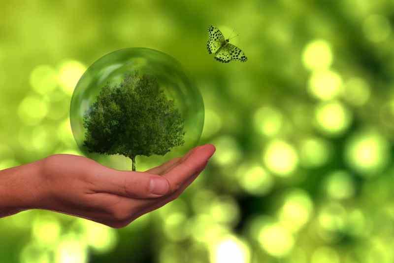 Qué es el marketing sostenible