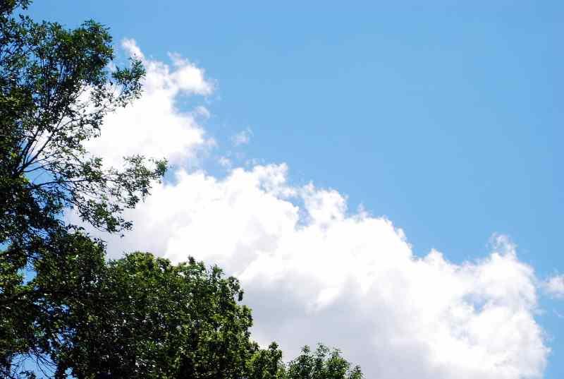 nube-verde