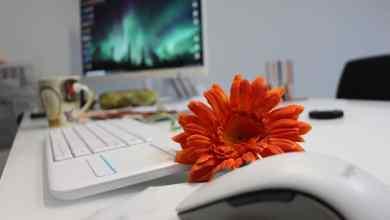 El puesto de trabajo digital